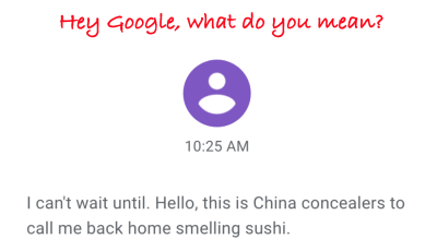 Google_chinaconcealers_txt